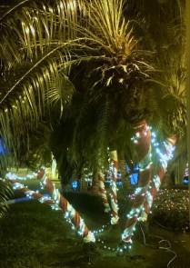 Weihnachtsdeko Jamaika
