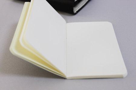moleskine_folio_digital_iphone_5.jpg