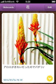 app_prod_notica_6.jpg