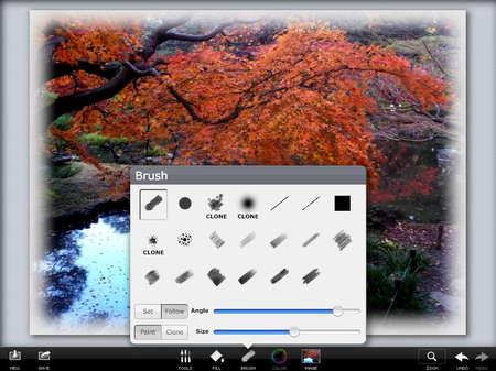 app_photo_photoviva_6.jpg