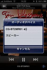 corega_cg-bt2mr01_11.jpg