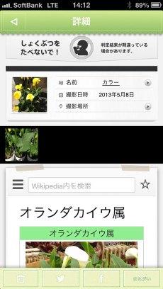 app_edu_plant_detection_9.jpg
