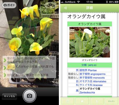 pop_entry_201305_1.jpg