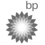 BP Logo | Touch Screen Solutions