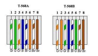 cat5 type b wiring diagram john deere 425 fuel pump cat 6 free for you 5 simple rh 13 terranut store cat6 a or uk
