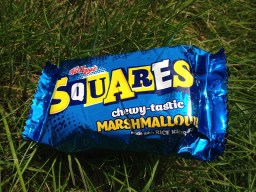 Tough Guy Marathon 2015, Marshmallow Snack