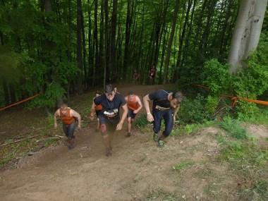 Tough Mudder NRW 2015, Waldabschnitt