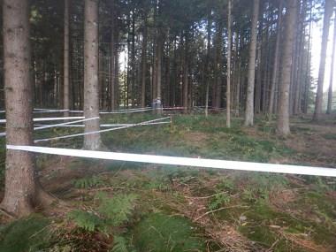 Hindernislauf Baden-Württemberg, Rothaus Mudiator Run 2015, Kriechhindernis im Wald