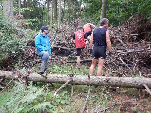 Hindernislauf Hessen, Bad Wolf Dirt Run 2015, Hindernis Bäume
