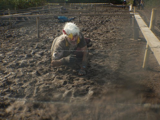 Strong Viking Obstacle Run brother edition 2015, Hindernis Crawl Up Tough Chicken