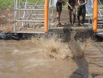 Tough Mudder, Hindernislauf NRW, Hindernis Funky Monkey 2.0 Falling Down 02