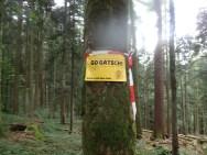 Wildsau Dirt Run, Hindernislauf Österreich, Go Gatsch
