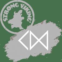 Logo Strong Viking Company Day