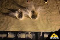 Mud Masters Obstacle Run Night Shift, Hindernislauf Deutschland, Hindernis Flyer by night 2