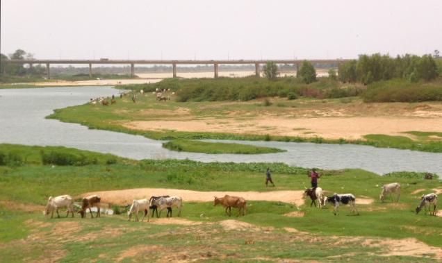 À l'arrière-plan, le pont de l'Amitié Chine-Niger, construit par les Chinois (qui sont en train d'acheter l'Afrique, littéralement).