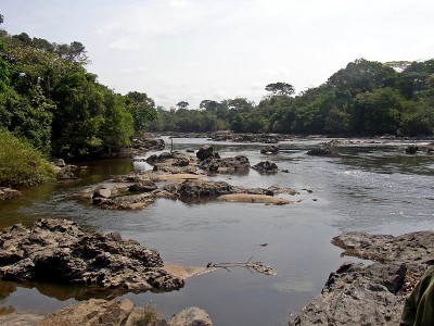 Epulu_Okapi_Reserve