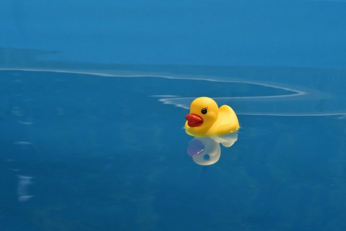 Les canards en plastique dans le bain, de véritables nids à microbes