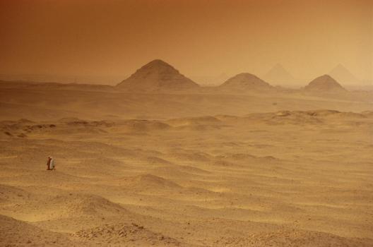البحث عن حمالة الحطب في صحراء تطاوين
