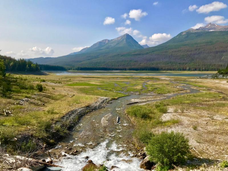 Kanada-Natur-im-Sommer