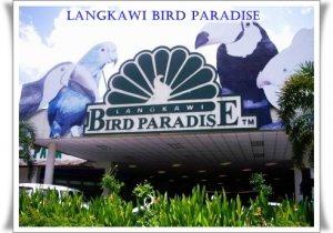 حديقة الطيور BIRD PARADISE
