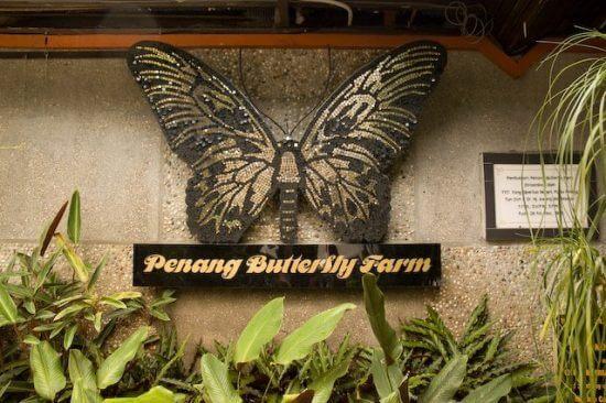 حديقة الفراشات في بينانج ماليزيا