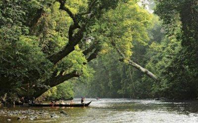 المحميات الطبيعية والحدائق الوطنية في ماليزيا