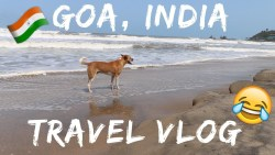 FUNNY ADVENTURE WITH A STREET DOG IN GOA, INDIA 😂🇮🇳 Travel Vlog Ep. 37 | Arambol Beach