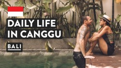 SNAKES IN BALI + DAY IN THE LIFE CANGGU | Indonesia Travel Vlog | Digital Nomad