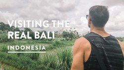UBUD RICE PADDIES & LOCAL VILLAGE | Travel Vlog 134, 2018 | Rice Fields & Terraces of Bali