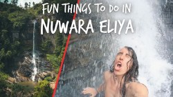 Fun Things to do in Nuwara Eliya, Sri Lanka