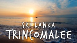 Trincomalee Sri Lanka Travel Guide 🇱🇰Should you visit here??