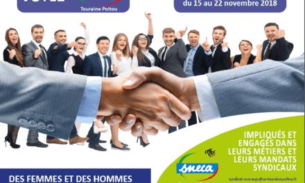Elections professionnelles : Votez pour qui vous voulez, mais votez … SNECA