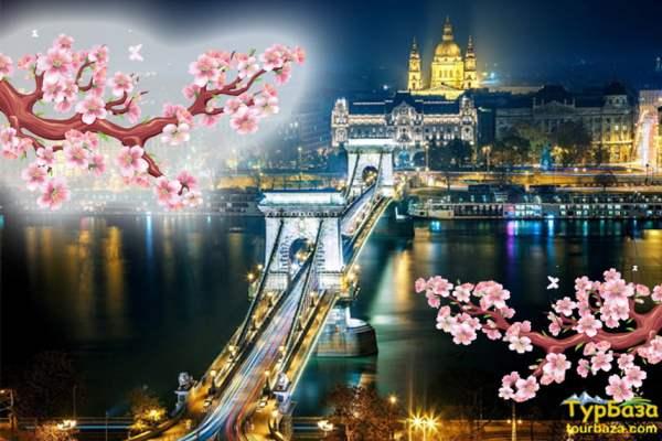 Вас чекає Відень та Будапешт