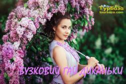 Диканька, Полтава