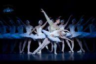 El ballet ruso. El lago de los sizles