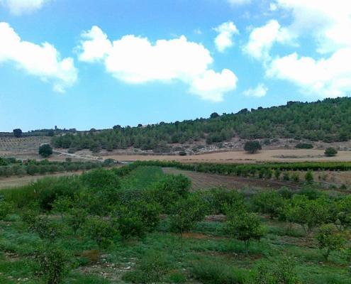 Nachal Tzippori Hike