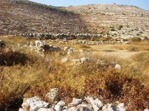 Tel Shiloh - site of the Tabernacle