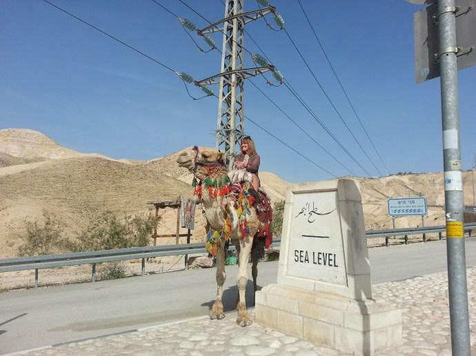 Camel riding near the Dead Sea
