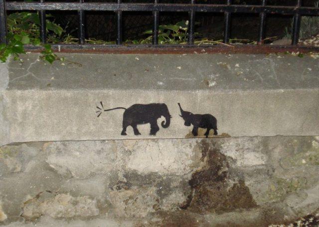 Graffitti Tiny Elephants