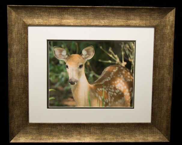 Framed and Matted-8907