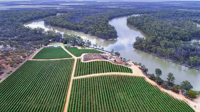 tourism-guide-australia-riverland-wine-region
