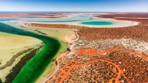 tourism-guide-Australia-shark-bay