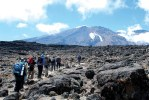 Kilimanjaro Safari Holidays Co.Ltd