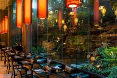 BTTHBK_Dining_Romsai Restaurant 12