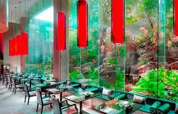 BTTHBK_Dining_Romsai Restaurant 6