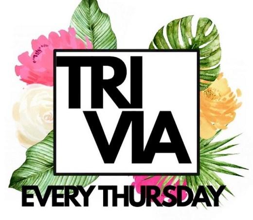 Trivia Thursdays Terminal Pub