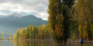 wildkamperen, meer