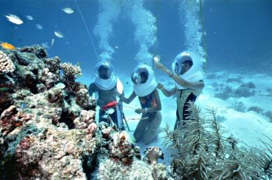 Tourist Places in Coral Sea Islands