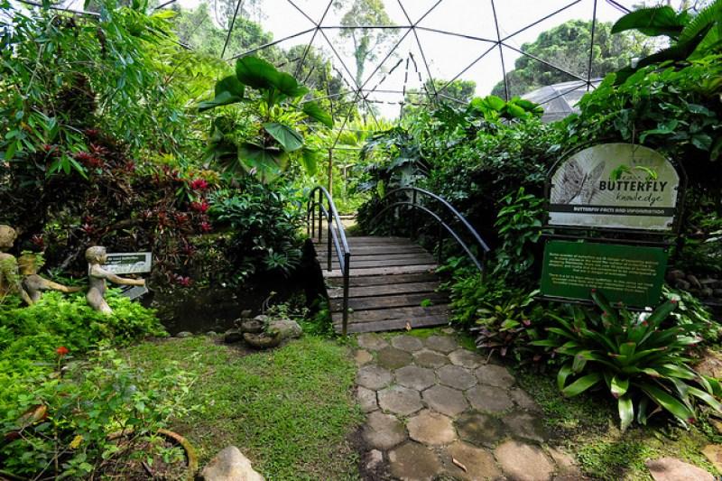 Davao Malagos Garden Resort
