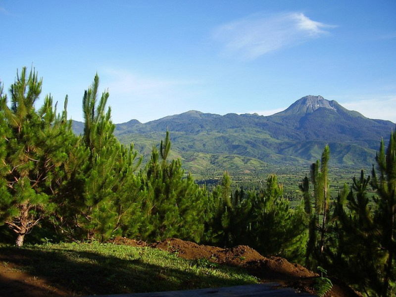 Mount Apo: The Famous National Park Essay Sample